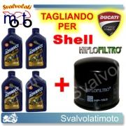 TAGLIANDO FILTRO OLIO + 4LT SHELL ADVANCE ULTRA 10W40 DUCATI MONSTER DARK 620 MD MONODISCO 2004