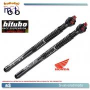 BITUBO H0133ECH29 CARTUCCE FORCELLA PRESSURIZZATE RACING HONDA CBR 1000RR NO ABS SC59 2008 > 2011