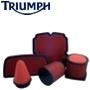 K&N Triumph